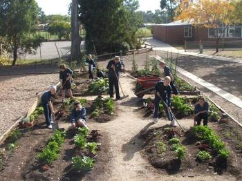 Primary students working in their Garden